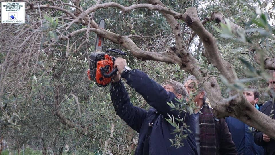 Σεμινάριο για την φυτοπροστασία, το κλάδεμα και την θρέψη της ελιάς. Ιανουάριος 2020